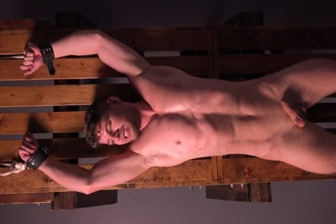 Muscle fellow Cums After Being Whipped & Stretched - bdsm