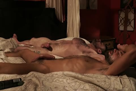 Hung males plowing