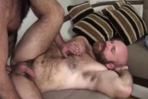 powerful Body Chest Hair Bear Daddy bonks Sex