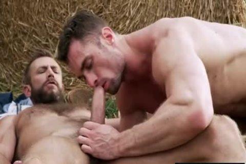 Muscle boys hammer.