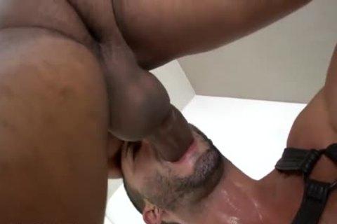[plow plow boyz] Andy Star & Marcelo Mastro