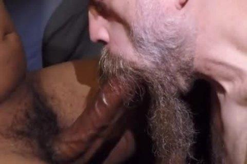 daddy Bearded fellow, engulf A dick