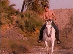 Arabian White Nights